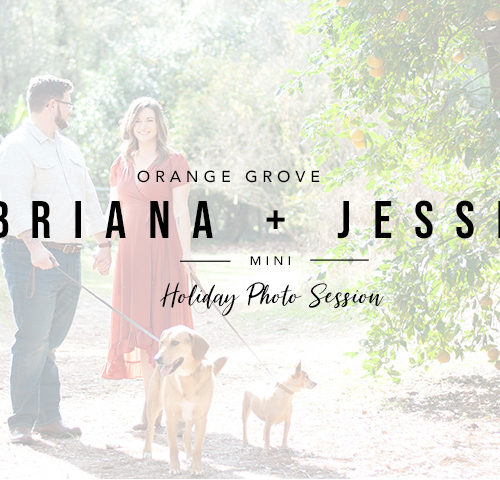 Briana and Jesse | Holiday Mini Session