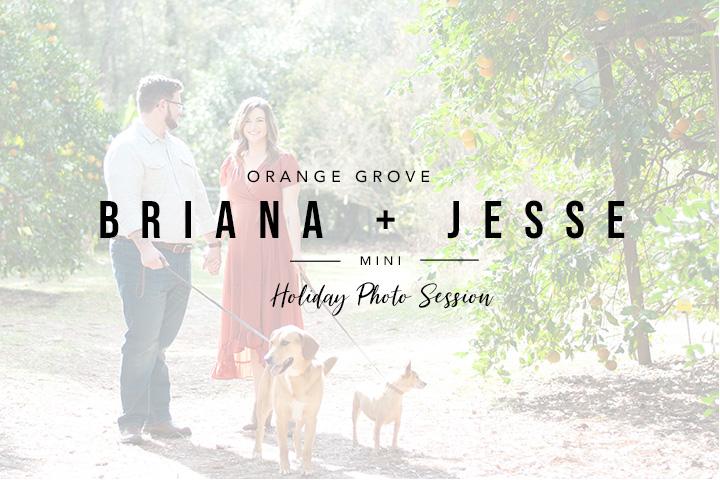 Orange Grove Holiday Mini Session