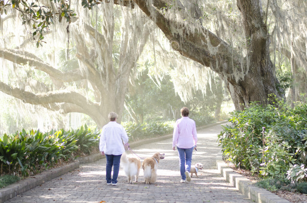 Maclay Gardens Tallahassee family photos with dogs